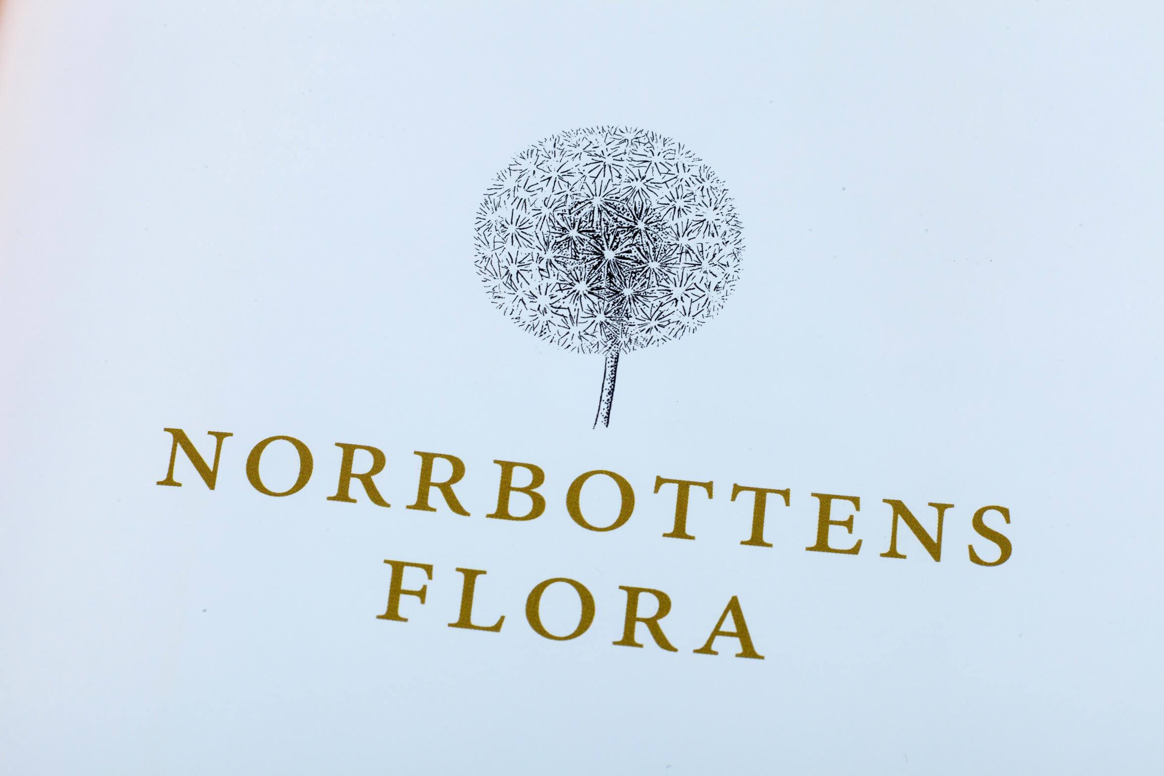 flora-iii-tin-detalj-0081_1